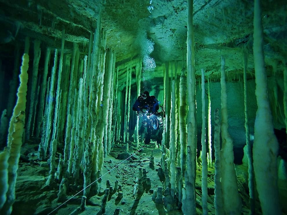 Cenote Diving In The Yucatan Peninsula Washington Adventures