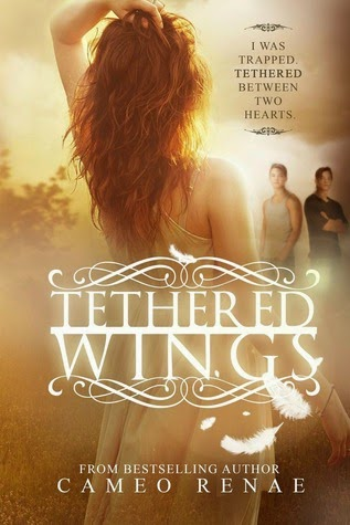 https://www.goodreads.com/book/show/21417201-tethered-wings?ac=1