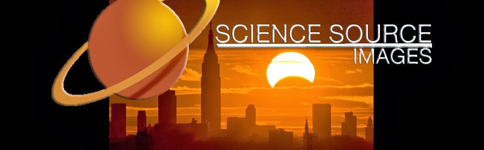 SCIENCE SOURCE NEWS