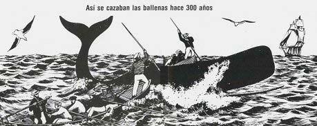 Resultado de imagen para aceite de ballena