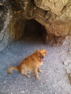 Scout in the Mica Mine at Bangs Canyon