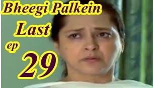Bheegi Palkein Last Episode 29 by Aplus