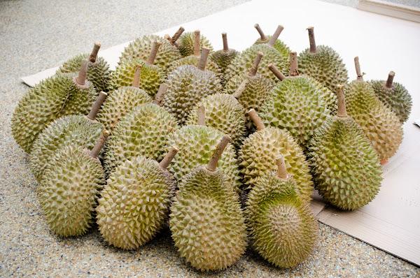 Tip Memilih Buah Durian