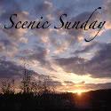 Scenic Sunday