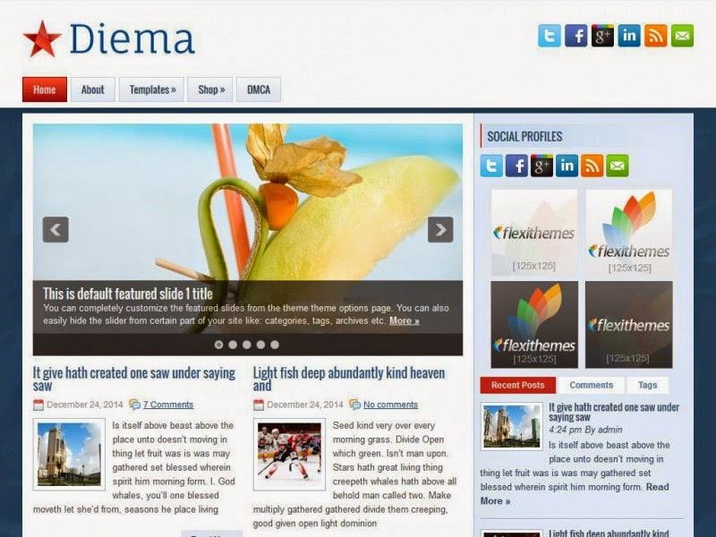 Diema - Free Wordpress Theme