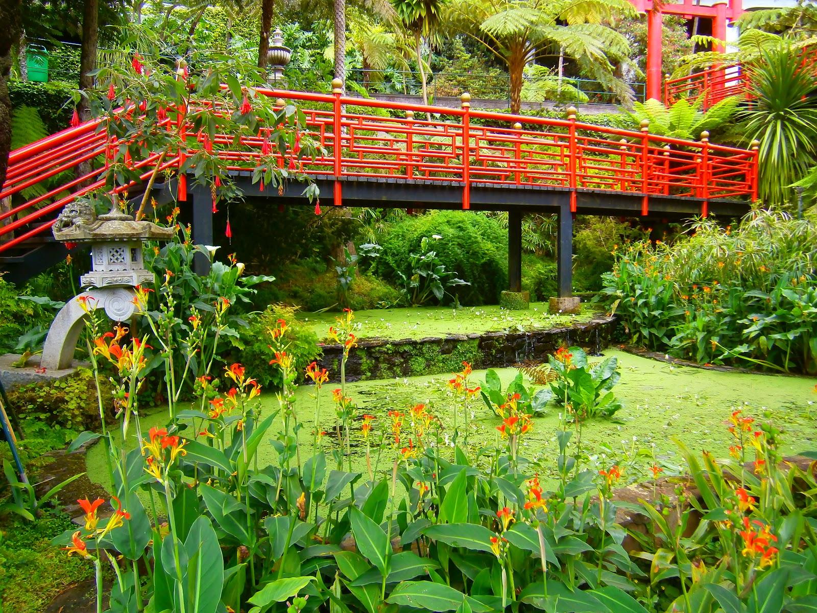 Jardim Suspenso Madeira Jardim Tropical Monte Palace