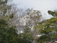 含山軒庭園(名勝)は伊吹山が借景になっている