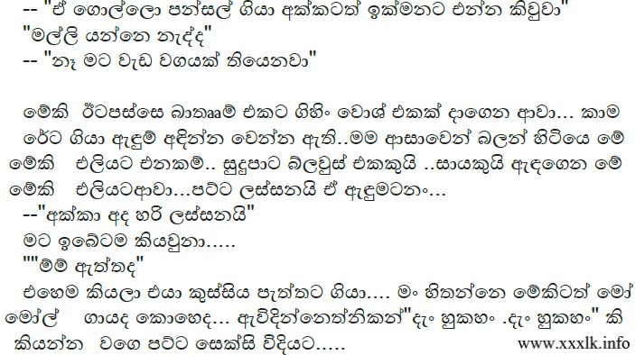 Sinhala wela katha pettiya kadima consejos de fotograf 237 a