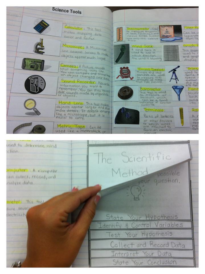 interactive science pearson 4th grade pdf
