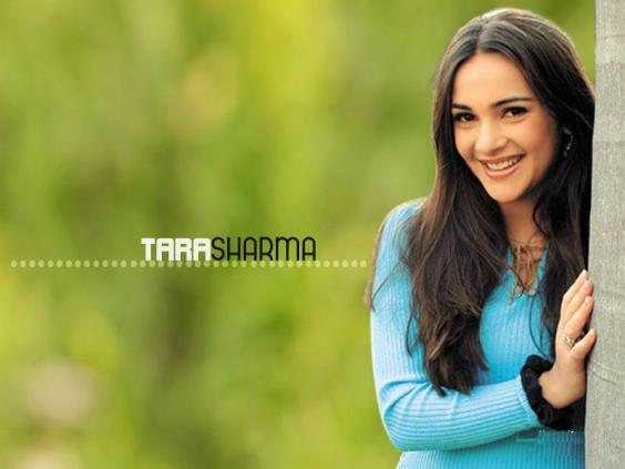 Tara Sharma Hd Wallpapers