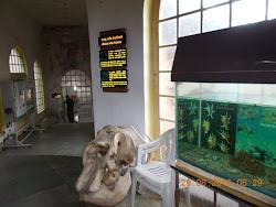 "Inside ""B.N.H.S"" conservation Education Centre building."
