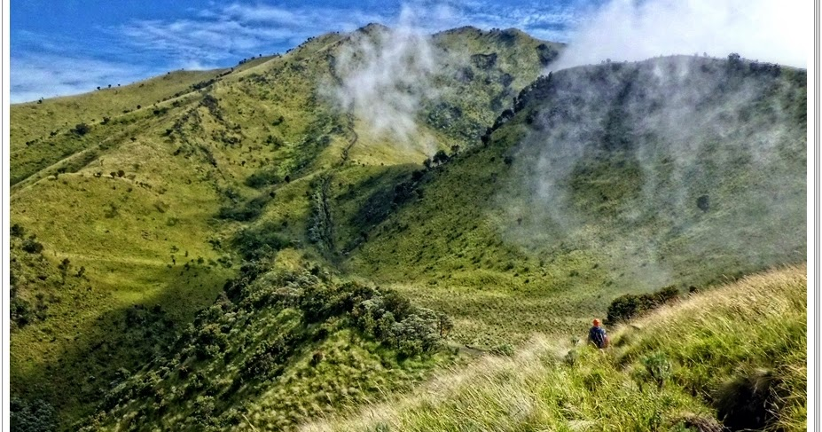 Jalur Pendakian Gunung Merbabu Jalur Wekas  Catatan Pendaki Gunung