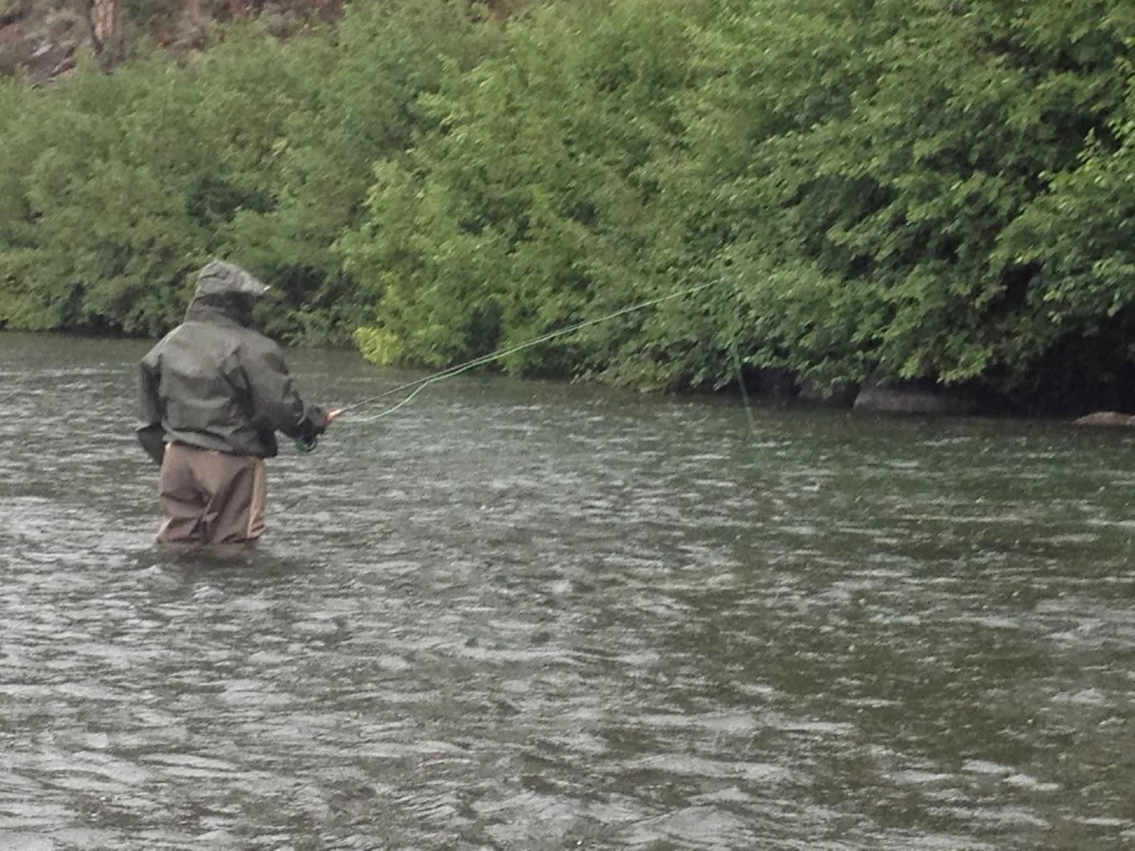 Northern sierra fly fishing northern sierra report 8 8 14 for Sierra fly fishing