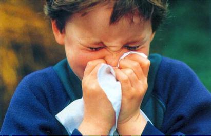 Flu pancaroba