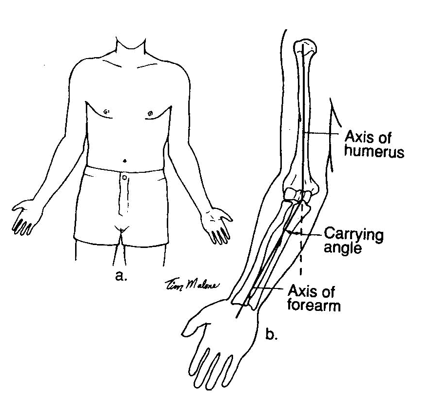 Excessive carrying angle of the elbow ssb medical test