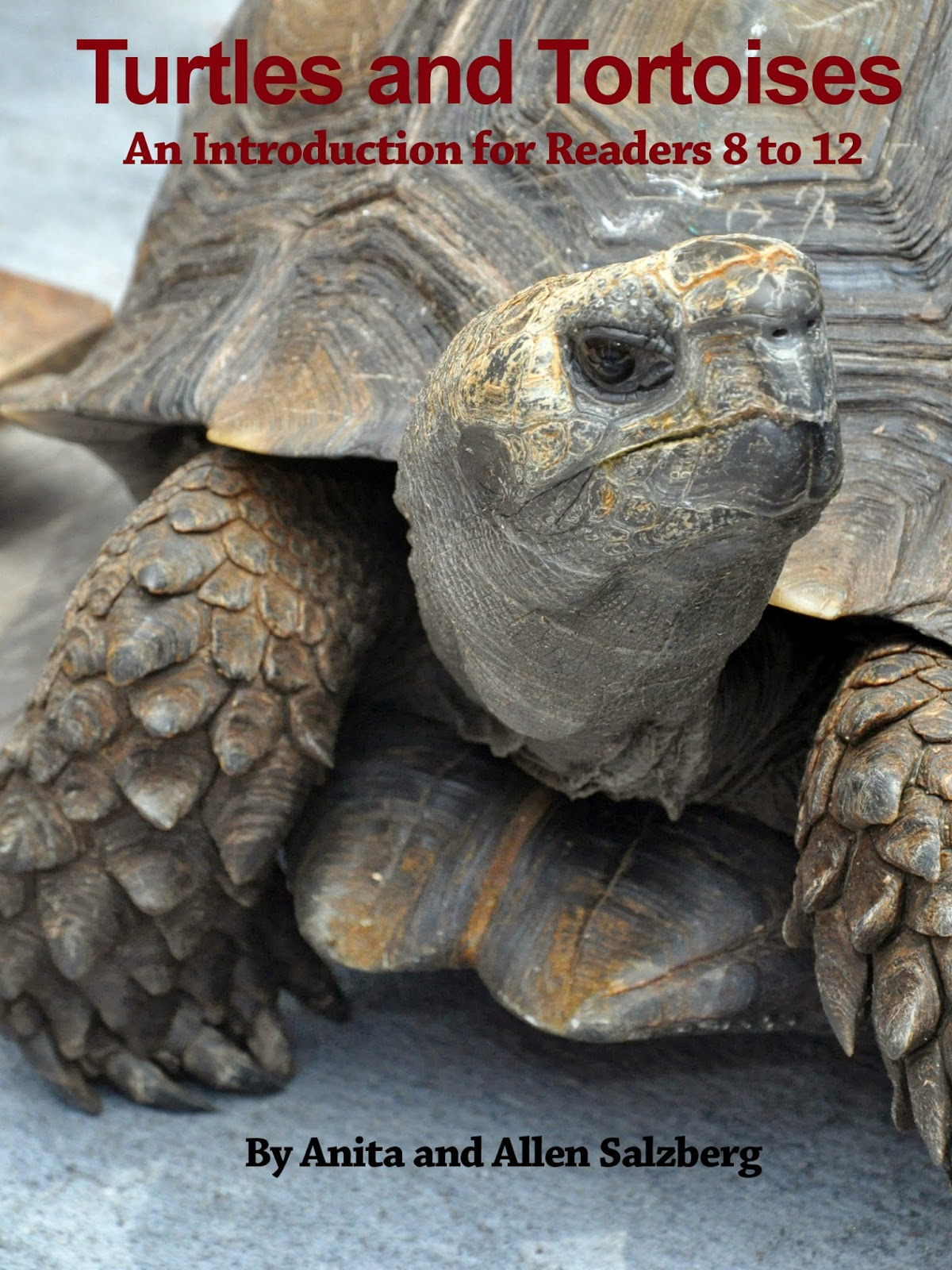 http://smile.amazon.com/TURTLES-AND-TORTOISES-Introduction-Readers-ebook/dp/B00TJCWWEC/ref=zg_bs_158637011_1