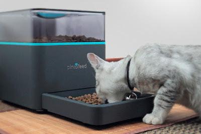 pintofeed, kotak makanan kucing otomatis