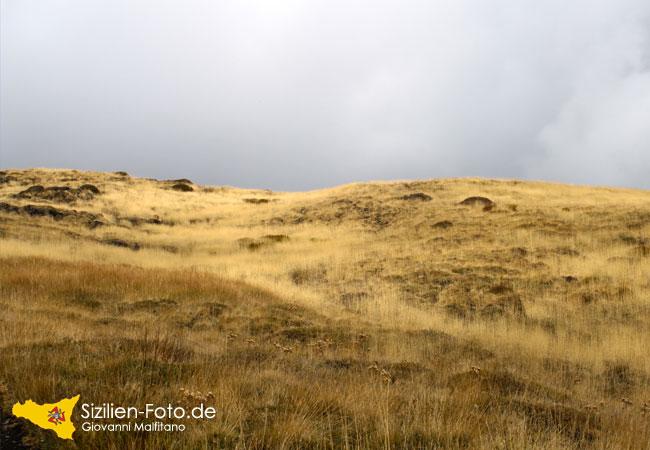 Vegetation im Oktober auf dem Vulkan Ätna