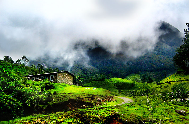 Munnar The Abode Of Attractions Facts N 39 Frames Movies Music Health Tech Travel
