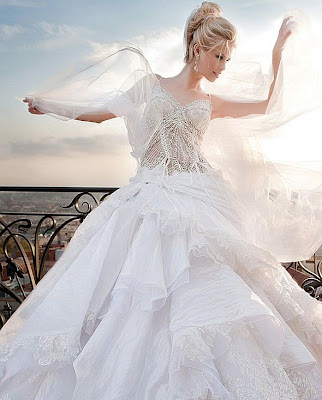 Daniel Degli Onofri Wedding Dress