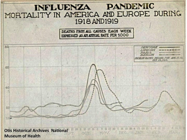 the prevalence of the influenza epidemic during world war i Lewrockwellcom anti-state•anti-war•pro-market exposed: the swine flu hoax by andrew moran the influenza epidemic in the us army during world war i.