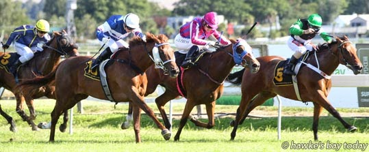 L-R: Buddy Lammas on Cupcake, Rosie Myers on Dixie Express, second, Lisa Allpress on Acquisto, winner, Robert Hannam on Notionannagins, third - Race 8, NZB Insurance Pearl Series Race Rating 65 $12,000, 1600m - Races at Hastings Racecourse, Hastings. photograph
