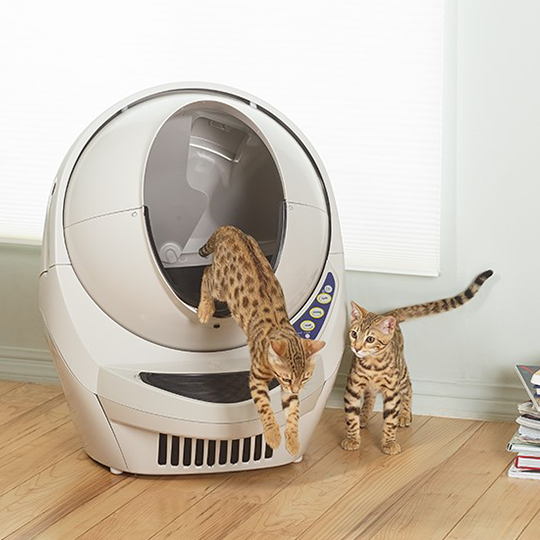 Win a Auto Kitty Litter Box!!