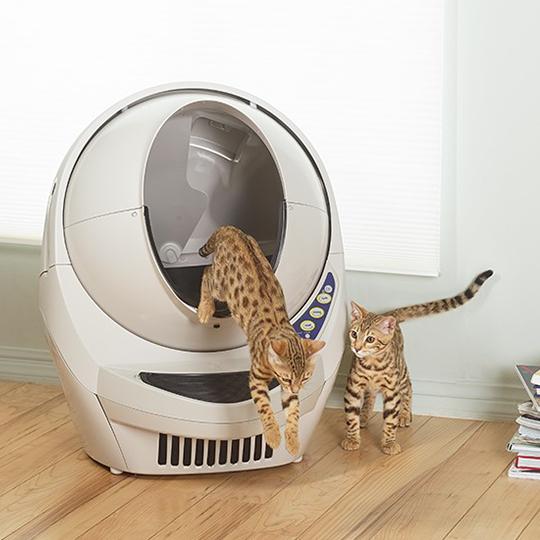 Win a Auto Kitty Litter Box!!