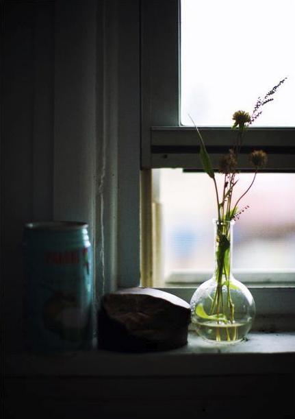 http://4.bp.blogspot.com/-Zj-fKQy6qQc/TVd2zTmsUWI/AAAAAAAAUZo/mBl4D7AO0sM/s1600/28_anna-love-lost-by-paul-barbera007.jpg
