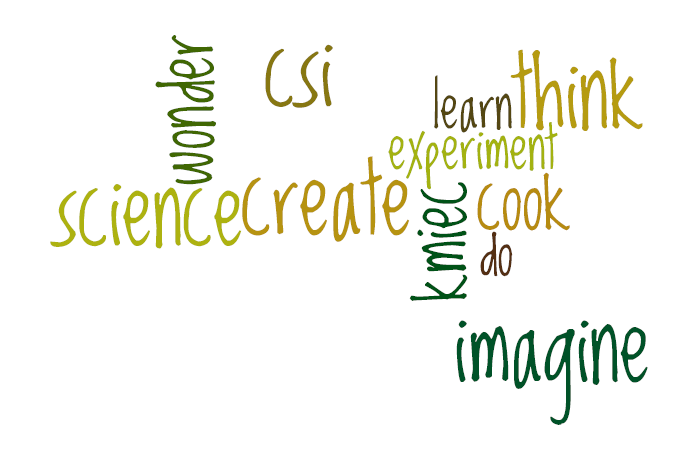 csi challenging scientific investigations back to school wordles. Black Bedroom Furniture Sets. Home Design Ideas