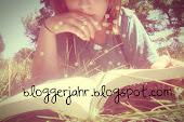 Bloggerjahr