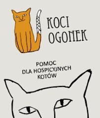 Kocie Hospicjum