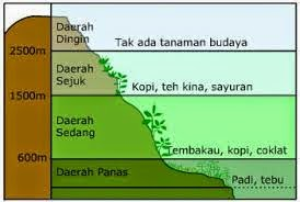 http://www.materisma.com/2014/09/hubungan-sebaran-flora-dan-fauna-dengan.html