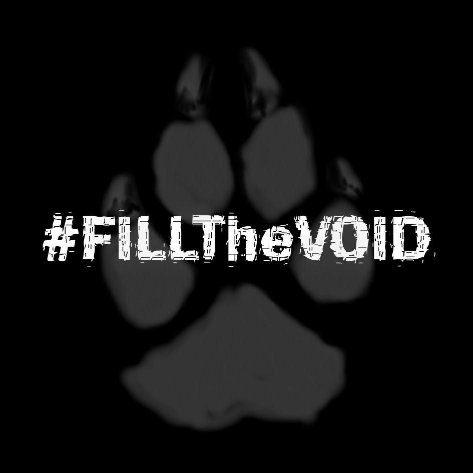 FILLTheVOID