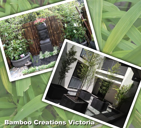 Small garden maintenance service by Bamboo Creations Victoria nursery