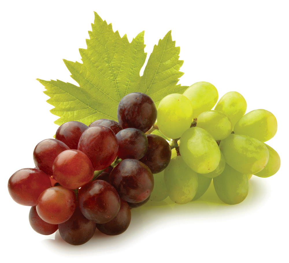 Http Fruits And Vegetables Blogspot Com 2012 08 Grape Html