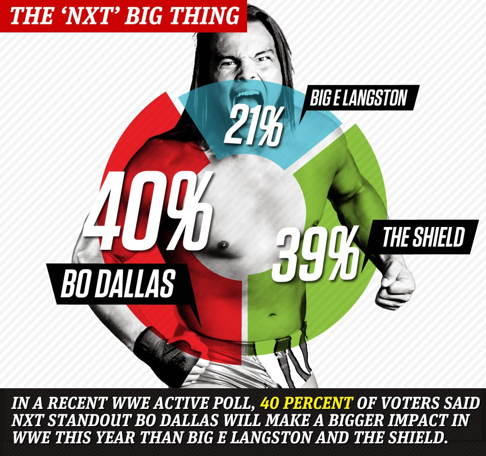Future of Bo Dallas in WWE poll