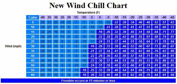 Air Temperature gauge PO0001