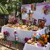 Gran muestra de altares de Hanal Pixán 2013 en la Plaza Grande