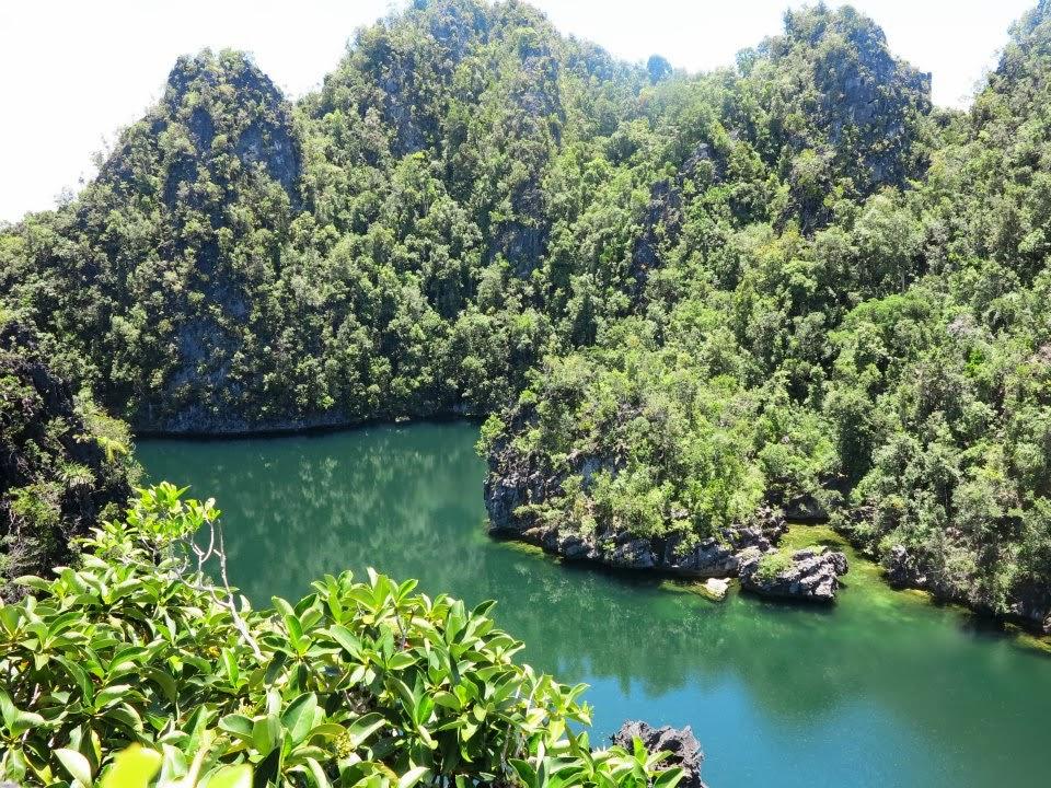danau ubur ubur di kepulauan misool papua