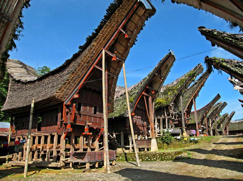 Traditional house of south sulawesi the fact of indonesia - Houses bucovina traditional architecture ...