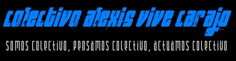 COLECTIVO ALEXIS VIVE CARAJO