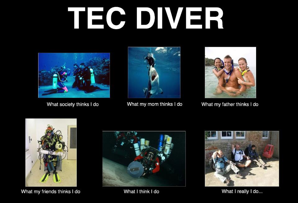 tecdiver the shekel coins, law and commentary the \