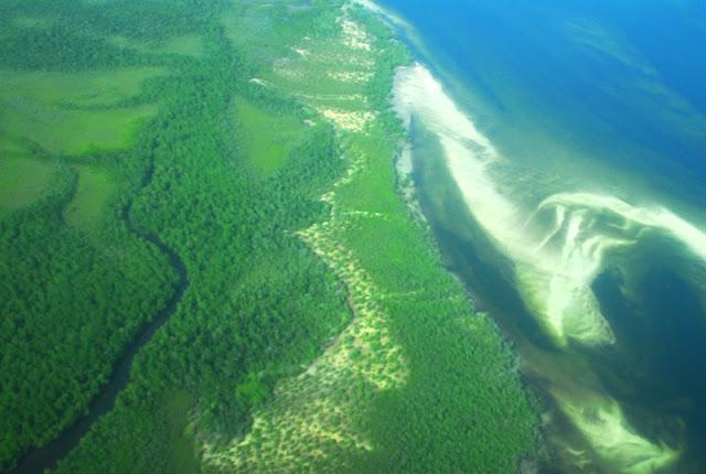 Mangrove à Lamu Area dans la côte du Kenya Océan indien