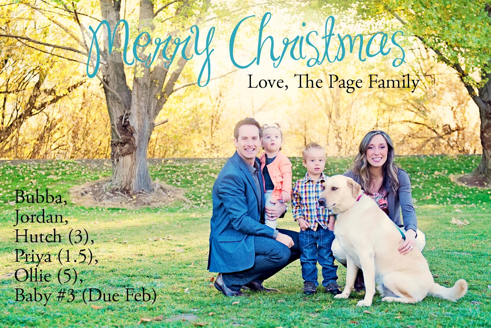 My diy free christmas cards fun cheap or free side one kristyandbryce Choice Image
