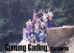 Gunung Gading, Sarawak.