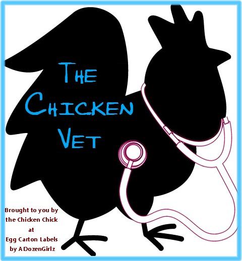 the chicken essay