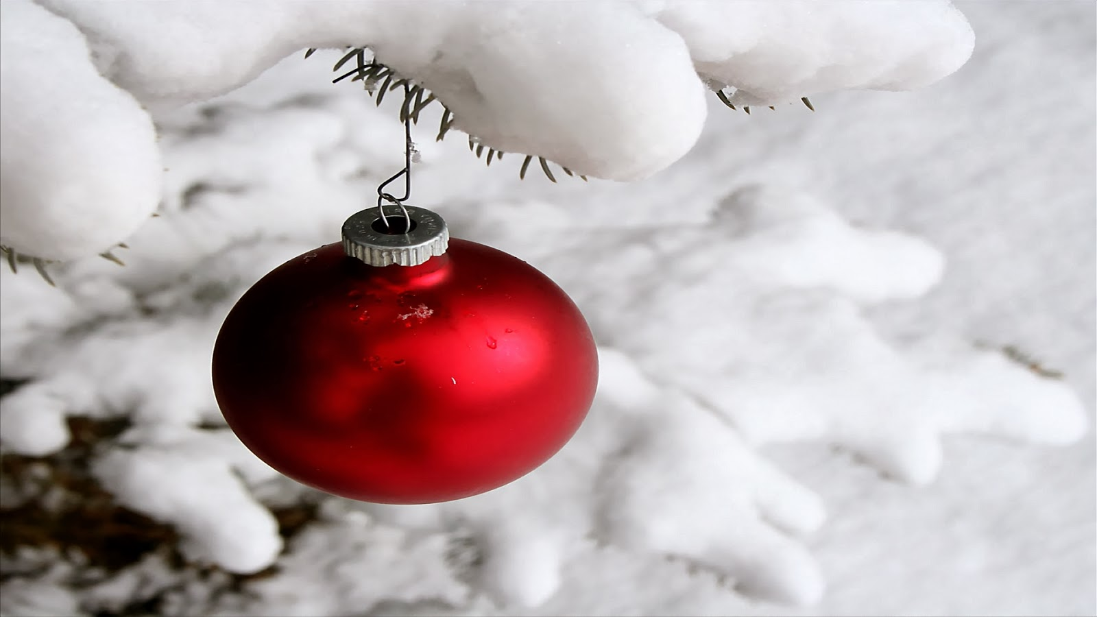 19 white christmas background hd