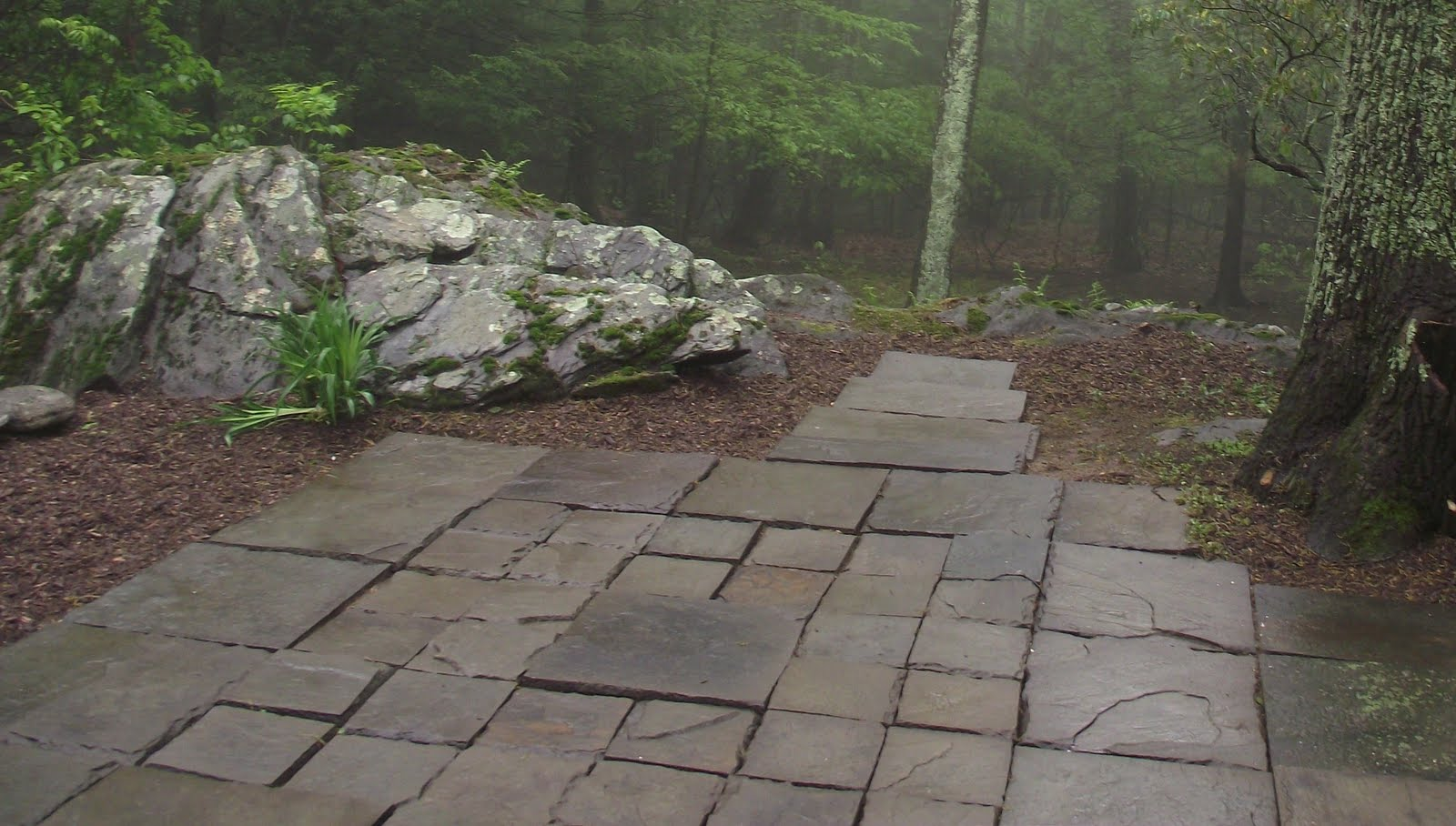Serendipity Chic Design Landscaping And Gardening For Low To No Cost