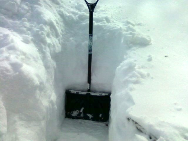 The middletown insider three feet of snow in my yard